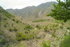 Die Kaukasus-Berge Lizenzfreie Stockbilder
