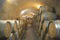 Die Keller von Newton Winery in Napa Valley Lizenzfreies Stockbild