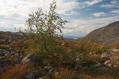 Die Khibiny Berge Lizenzfreies Stockfoto