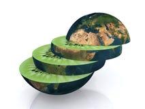Die Kiwiwelt geschnitten lizenzfreie abbildung