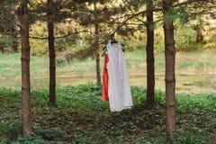 Die Kleidung der Frauen auf einem Aufhänger im Wald auf einem Baum auf einer Niederlassung Lizenzfreie Stockfotos