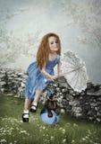 Die kleine Dame Stockfotografie