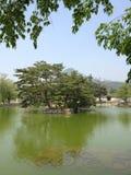 Die kleine Insel im Teich Stockfotografie