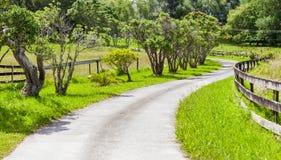 Die kleine kurvenreiche Straße durch Ackerland und grüne Baumszene Stockbilder