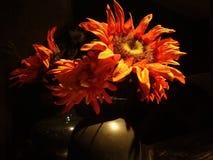 Die kleine Sonnenblume stockbilder