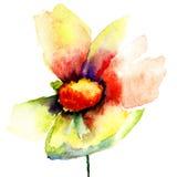 Die Knospe der gelben Blume Stockbilder