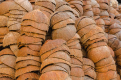 Die Kokosschale Stockfotos
