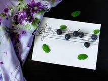 Die Komposition, die von den Pflaumen gemacht wurde, bezog sich mit dem Thema von Musik Lizenzfreie Stockfotos