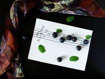 Die Komposition, die von den Pflaumen gemacht wurde, bezog sich mit dem Thema von Musik Lizenzfreie Stockbilder