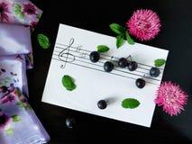 Die Komposition, die von den Pflaumen gemacht wurde, bezog sich mit dem Thema von Musik Lizenzfreie Stockfotografie