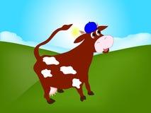 Die Kuh in der Weide Lizenzfreies Stockfoto