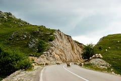 Die kurvenreiche Straße in Montenegro Lizenzfreies Stockfoto