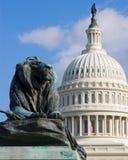 Die Löweskulptur mit US-Kapitolhintergrund Lizenzfreie Stockbilder