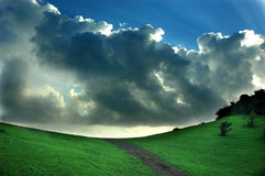 Die Landschaft. Stockbild