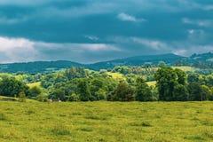 Die Landschaft in Dartmoor Stockbilder