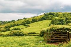 Die Landschaft in Dartmoor Stockfotografie