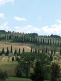 Die Landschaft der Toskana Lizenzfreies Stockbild