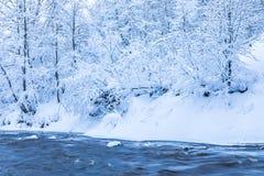 Die Landschaft des kleinen Flusses oder des Baches im schönen Winterwald oder im Park stockfotografie