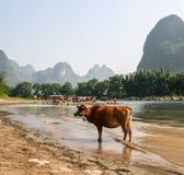 Die Landschaft in Guilin, Porzellan Stockfoto