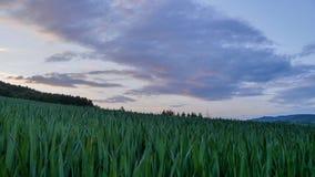 Die Landschaft mit den Wolken Lizenzfreie Stockfotos