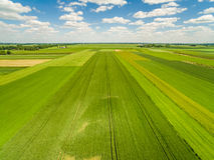 Die Landschaft und Feld, die vom Vogel ` s gesehen werden, mustern Ansicht Erntefelder, die zum Horizont ausdehnen stockfotografie