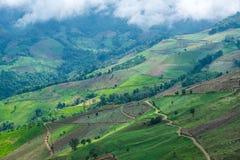 Die Landschaft von Hochlandbergen in Thailand stockfotos