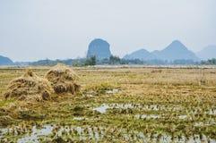 Die Landschafts- und Gebirgslandschaft im Herbst Lizenzfreie Stockbilder