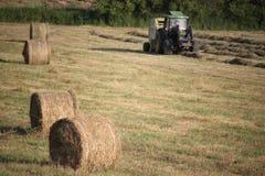 Die Landwirtschaft arbeitet in einem grünen Mähdrescher lizenzfreies stockbild