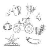 Die Landwirtschaft und der Bauernhof skizzierten Gegenstände Stockfoto