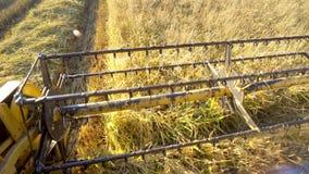 Die Landwirtschaft und die Erntemaschine kombinieren die Schermaschinen, die Reis, Weizen sammeln lizenzfreie stockbilder