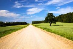 Die landwirtschaftliche Straße Lizenzfreies Stockfoto