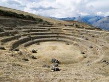 Die landwirtschaftlichen Inkaterrassen am Moray, Peru Stockbilder