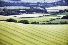 Die Landwirtschaftslandschaft an Firle-Leuchtfeuer in Ost-Sussex, England lizenzfreie stockfotos