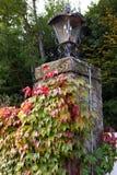 Die Laterne auf der Steinspalte mit den grünen und roten Blättern der Liane Stockfotos