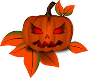 Die leaf and pumpkin in halloween day Royalty Free Stock Photo