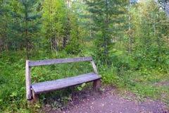 Die leere Bank, im Wald stehend Stockfoto