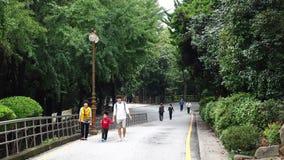 Die Leute, die bei Nampo gehen, parken in Busan, Südkorea stock video