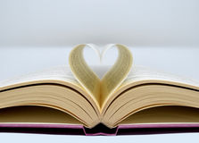 Die Liebe für die Bücher Lizenzfreie Stockbilder