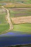 Die Linse, die in Castelluccio di Norcia blüht Tausenden Farben Stockfoto