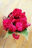 Die lokalen Rosen Stockbild