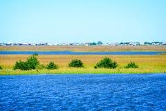 Die Louisiana-Sumpfgebiete lizenzfreies stockfoto
