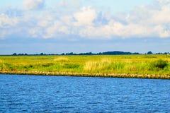 Die Louisiana-Sumpfgebiete stockbild