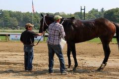 Die Männer, die hinunter das Gewinnen des vollblütigen Pferds nahe den Siegern abwischen, kreisen, Saratoga-Rennbahn, 2015 ein Stockfoto