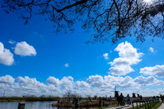 Die Mühlen von Kinderdijk - Niederlanden Lizenzfreies Stockbild