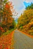 Die Magie des Herbstes Lizenzfreie Stockfotos