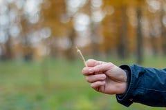 Die Mann holgs in seiner Hand gemeinsam mit medizinischem Marihuana Hanfgelenk lizenzfreies stockfoto