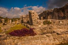 Die Mayaruinen in Tulum, Maya Mexikos, Riviera, Yucatan Tulum war eine der letzten Städte, die vom Maya errichtet wurden und bewo Stockfotos