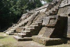 Die Mayaruinen von Lamanai stockbilder