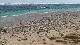 Die Meereswogen, die auf dem Sand einhüllen, setzen mit einigen Steinen auf den Strand Riff bewegt in Hintergrund wellenartig stock footage