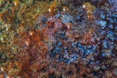 Die mehrfarbige Schlammpfütze lizenzfreies stockbild